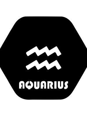 Aquarius symbol sticker