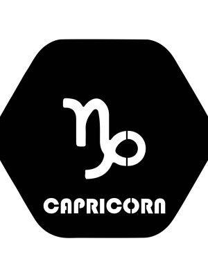capricorn sticker